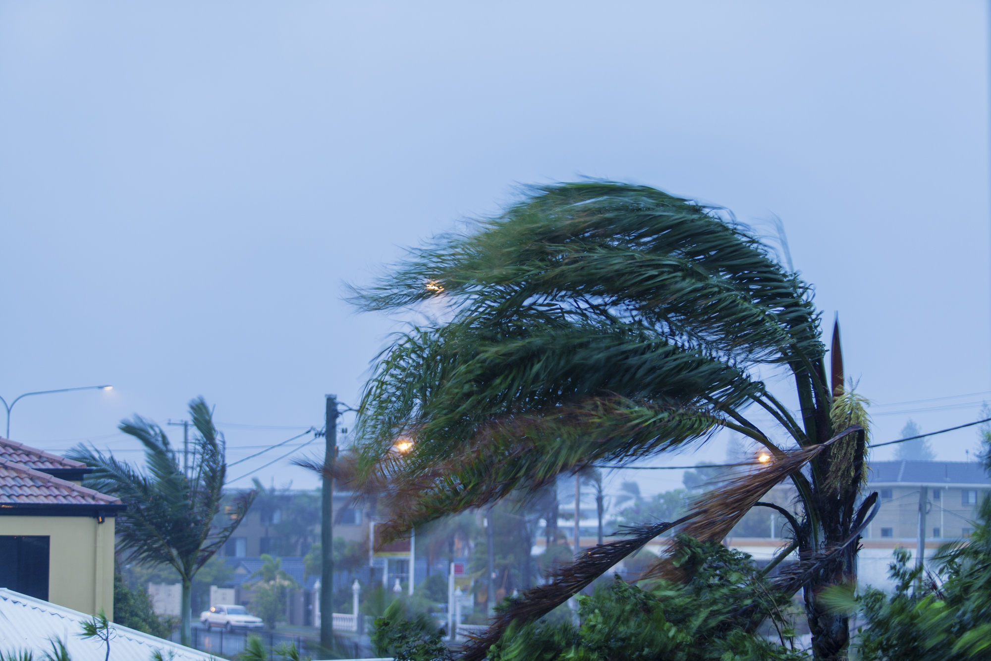 Some Hurricane Protection Tips Every Homeowner Should Know